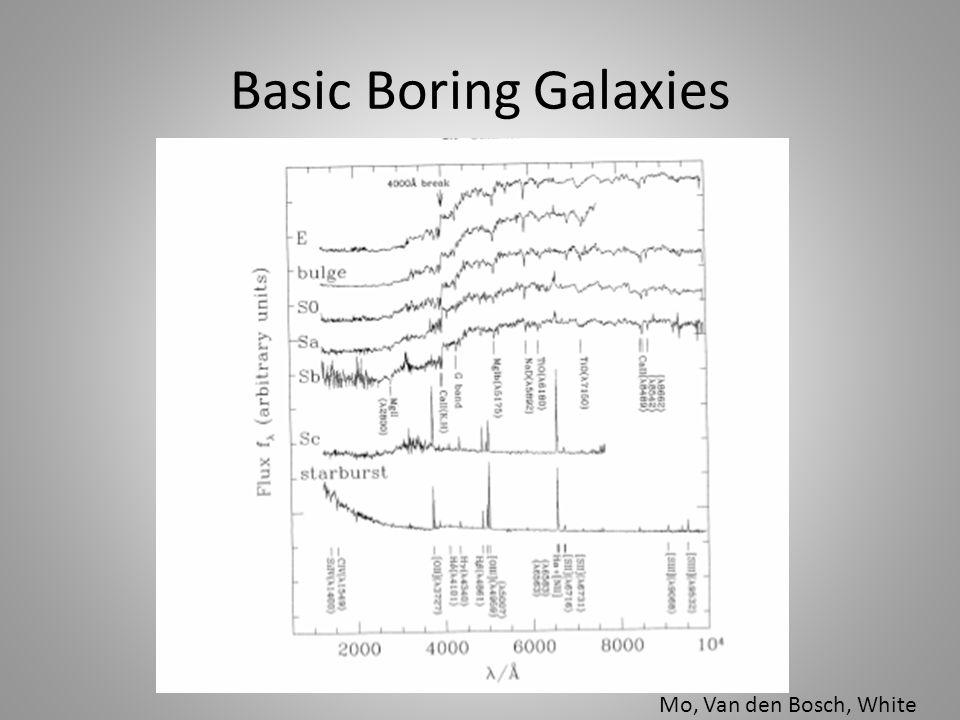Basic Boring Galaxies Mo, Van den Bosch, White
