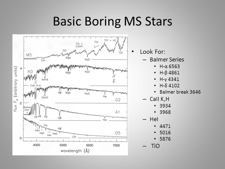 Basic Boring MS Stars Look For: – Balmer Series H-α 6563 H-β 4861 H-γ 4341 H-δ 4102 Balmer break 3646 – CaII K,H 3934 3968 – HeI 4471 5016 5876 – TiO