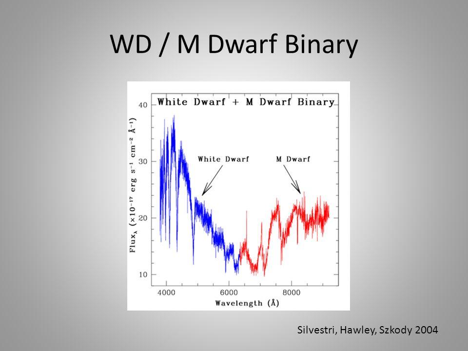 WD / M Dwarf Binary Silvestri, Hawley, Szkody 2004