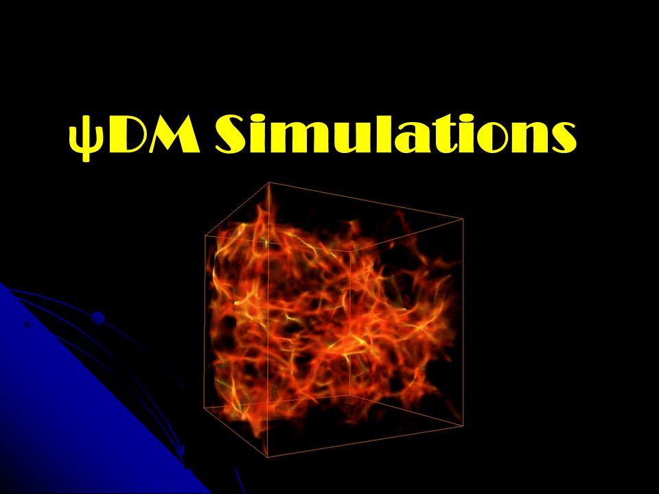 ѱ DM Simulations
