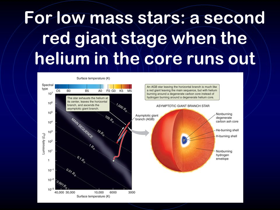 For low mass stars: a second red giant stage when the helium in the core runs out