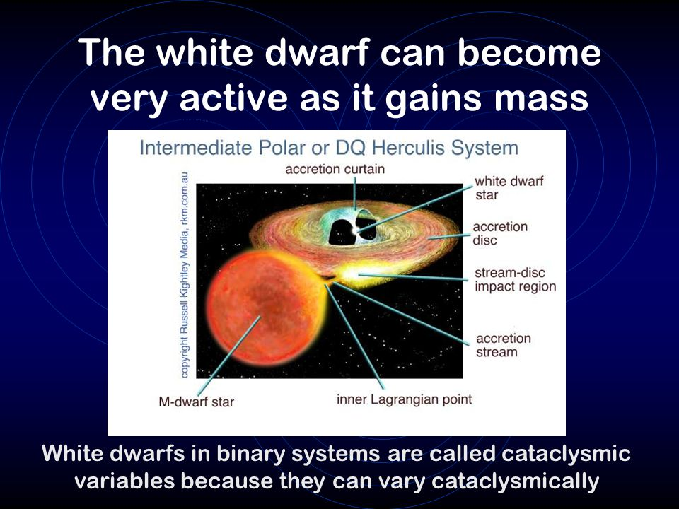 The white dwarf can become very active as it gains mass White dwarfs in binary systems are called cataclysmic variables because they can vary cataclys