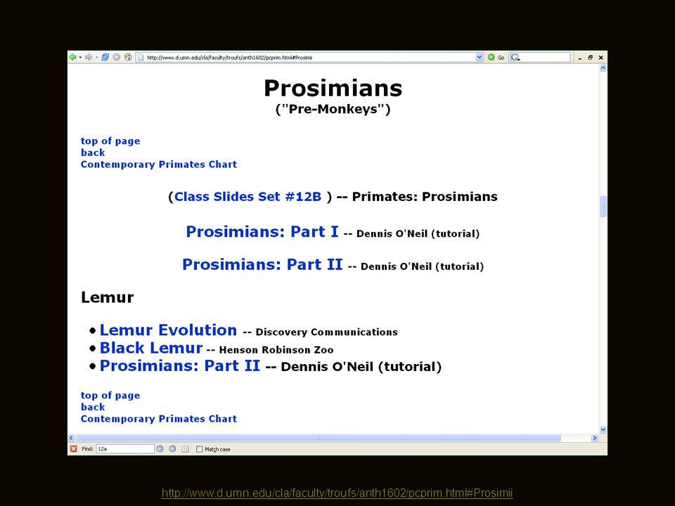 http://www.d.umn.edu/cla/faculty/troufs/anth1602/pcprim.html#Prosimii