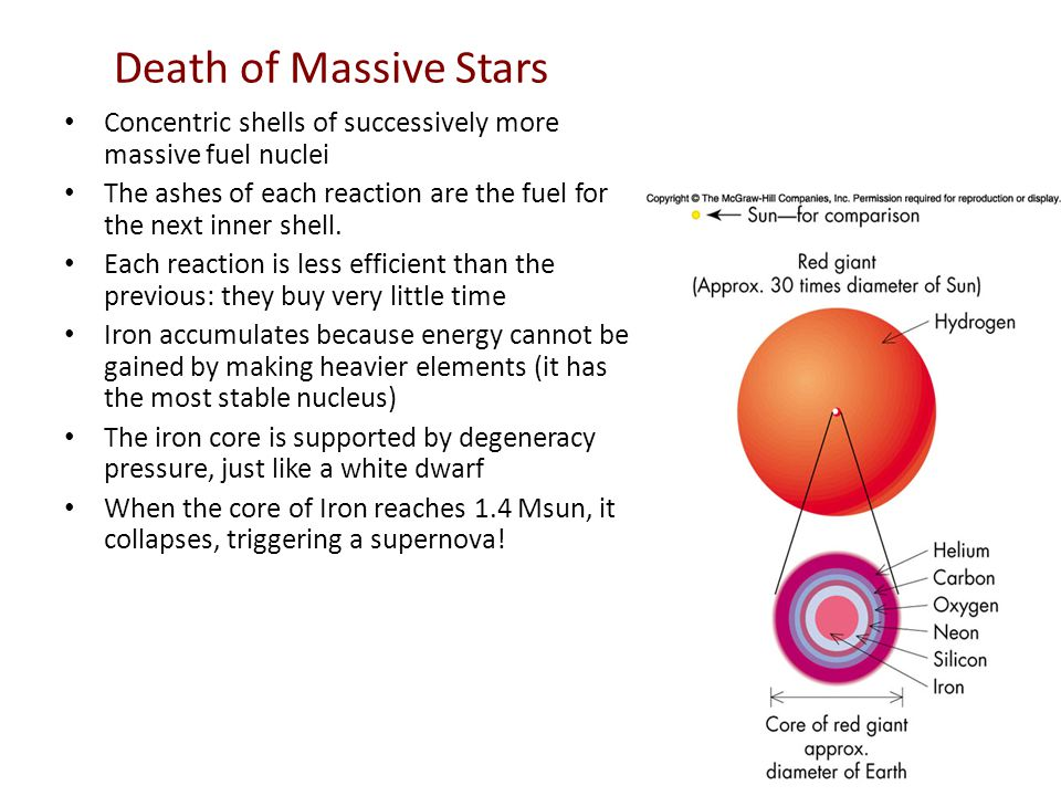 Death of Massive Stars Concentric shells of successively more massive fuel nuclei The ashes of each reaction are the fuel for the next inner shell.