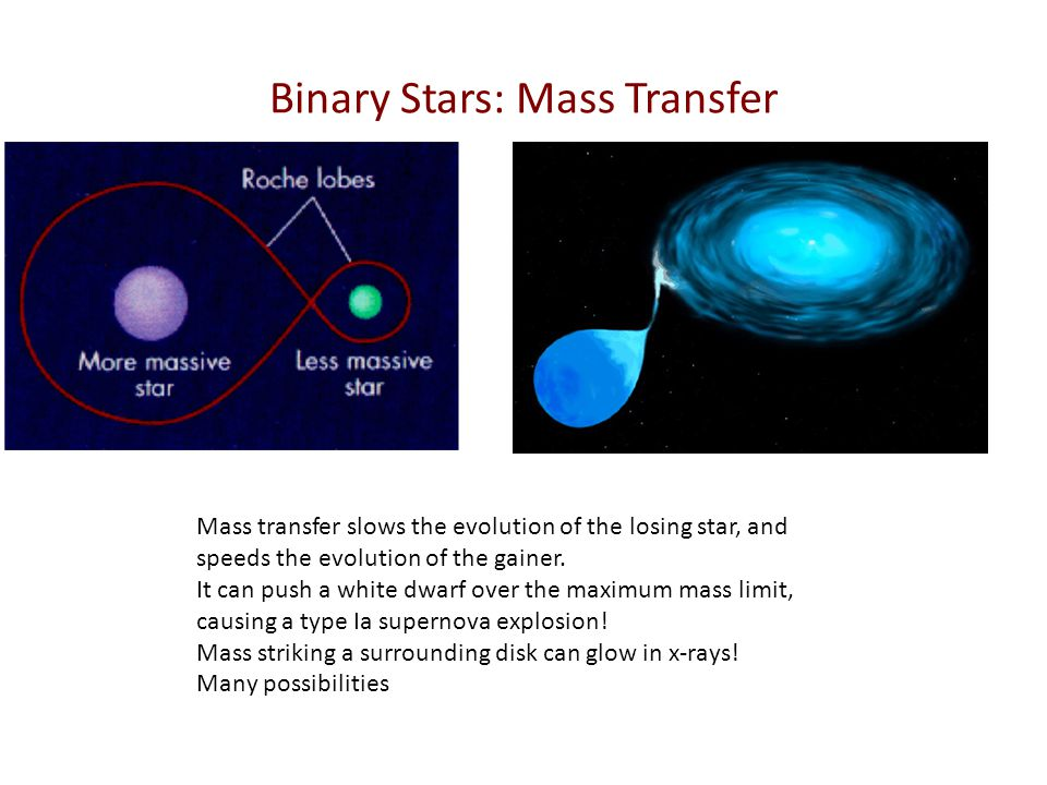 Binary Stars: Mass Transfer Mass transfer slows the evolution of the losing star, and speeds the evolution of the gainer. It can push a white dwarf ov