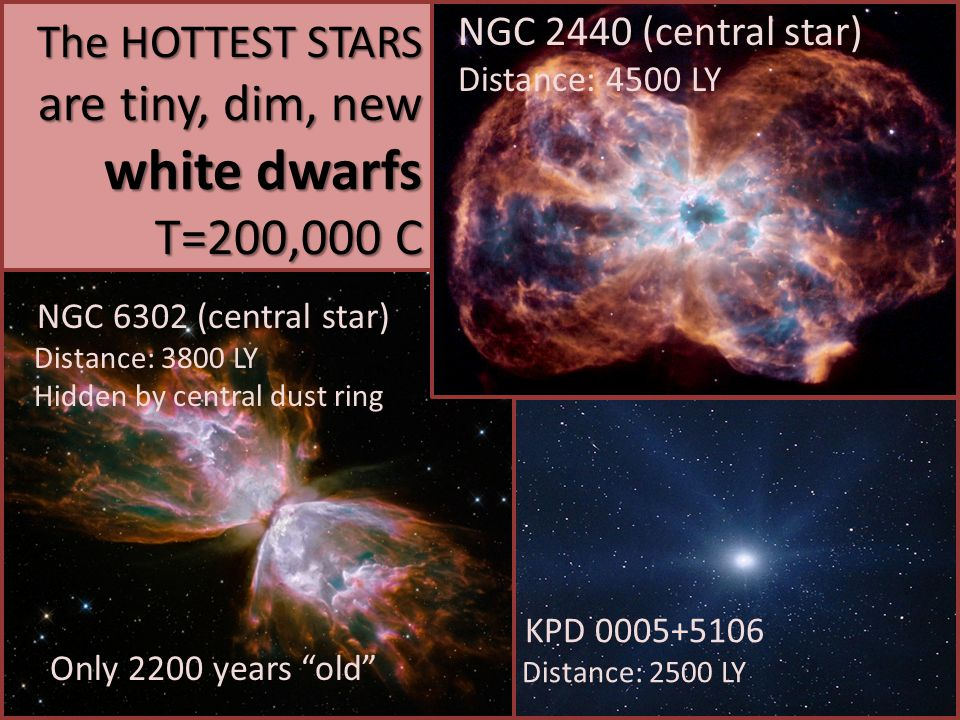 The HOTTEST STARS are tiny, dim, new white dwarfs T=200,000 C NGC 2440 (central star) Distance: 4500 LY NGC 6302 (central star) Distance: 3800 LY Hidd