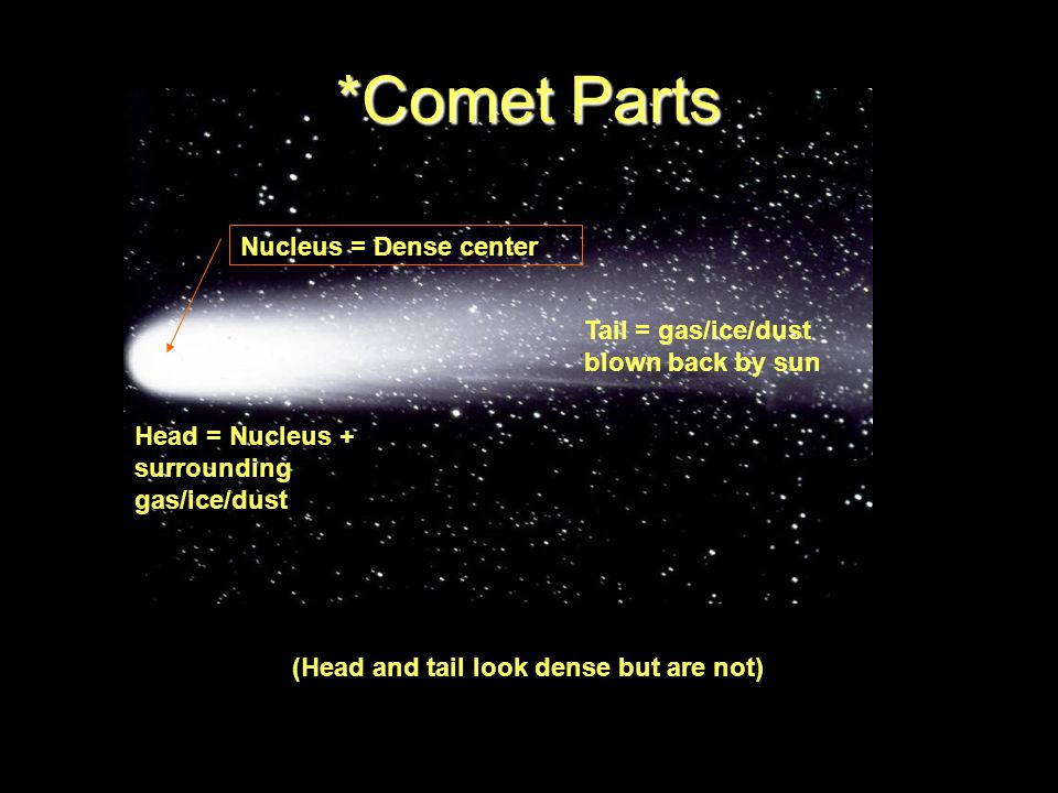 Tail = gas/ice/dust blown back by sun Nucleus = Dense center Head = Nucleus + surrounding gas/ice/dust *Comet Parts (Head and tail look dense but are