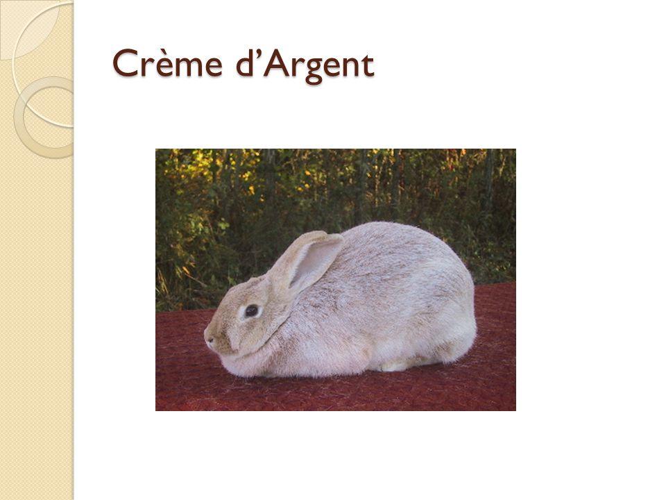 Crème d'Argent