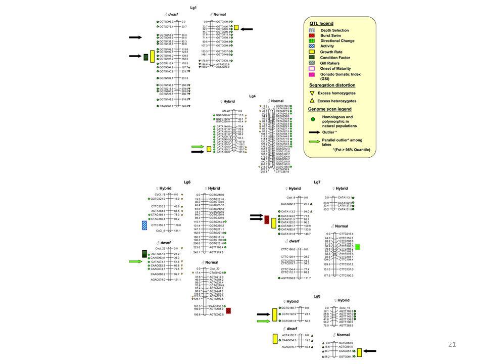 Roger Butlin - Genome scans21