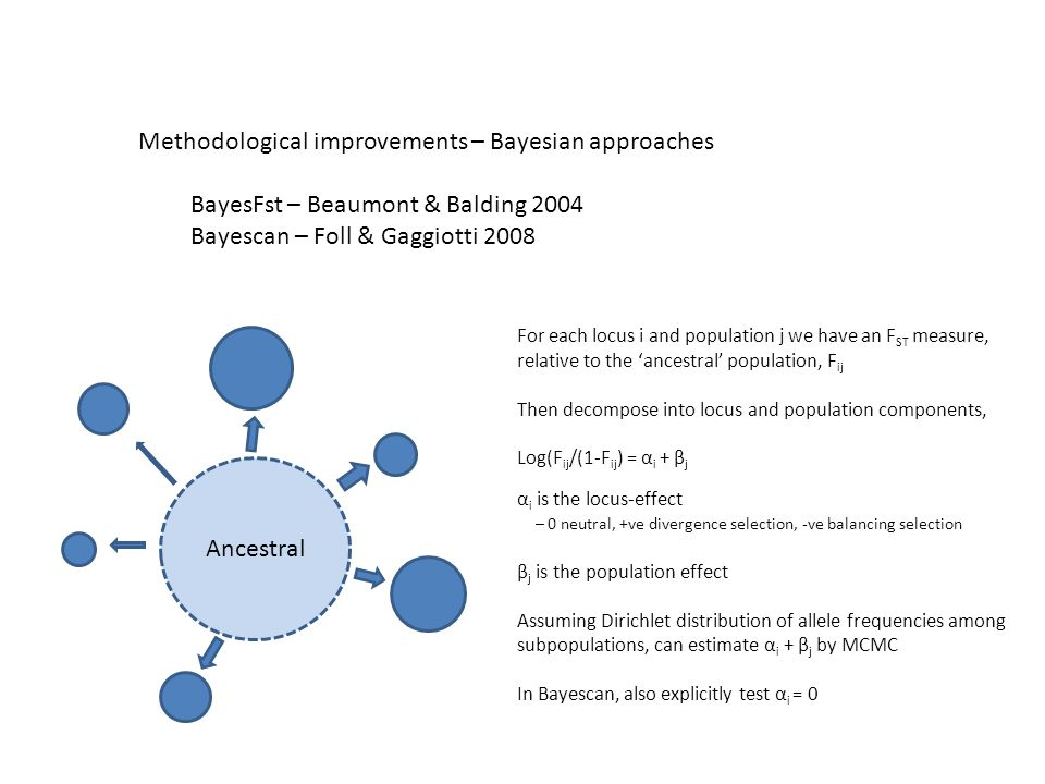 Methodological improvements – Bayesian approaches BayesFst – Beaumont & Balding 2004 Bayescan – Foll & Gaggiotti 2008 Ancestral For each locus i and population j we have an F ST measure, relative to the 'ancestral' population, F ij Then decompose into locus and population components, Log(F ij /(1-F ij ) = α i + β j α i is the locus-effect – 0 neutral, +ve divergence selection, -ve balancing selection β j is the population effect Assuming Dirichlet distribution of allele frequencies among subpopulations, can estimate α i + β j by MCMC In Bayescan, also explicitly test α i = 0