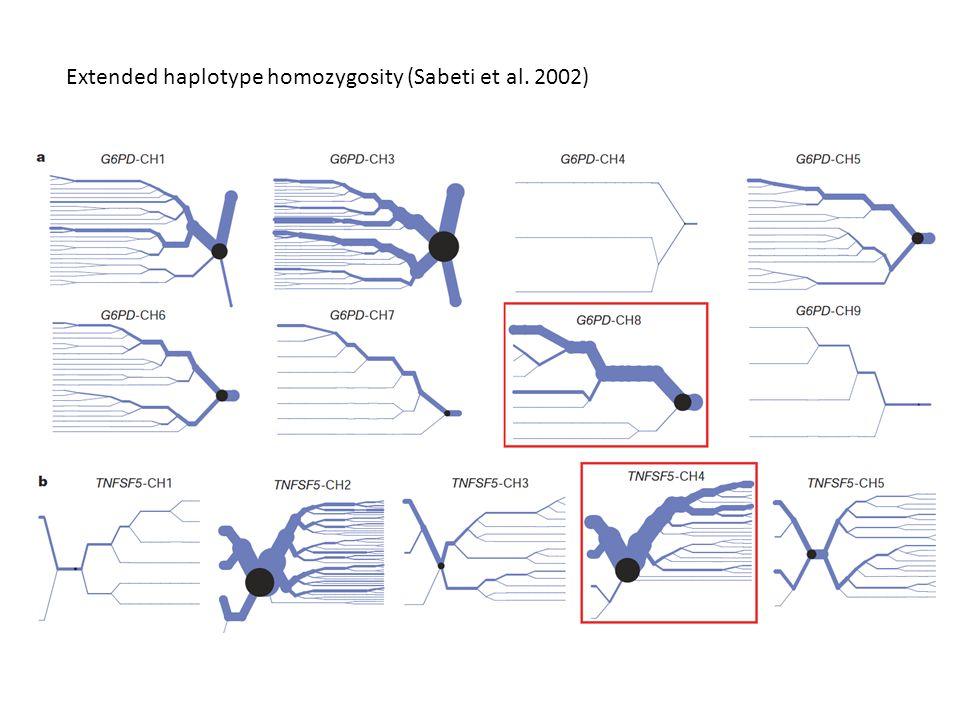 Extended haplotype homozygosity (Sabeti et al. 2002)