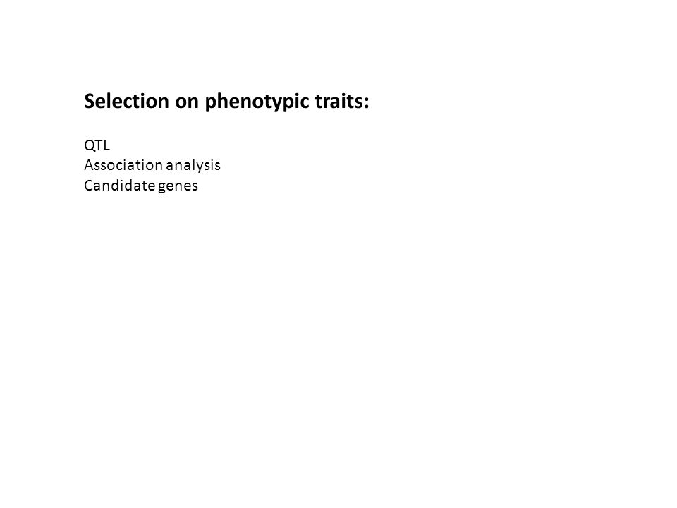 Selection on phenotypic traits: QTL Association analysis Candidate genes