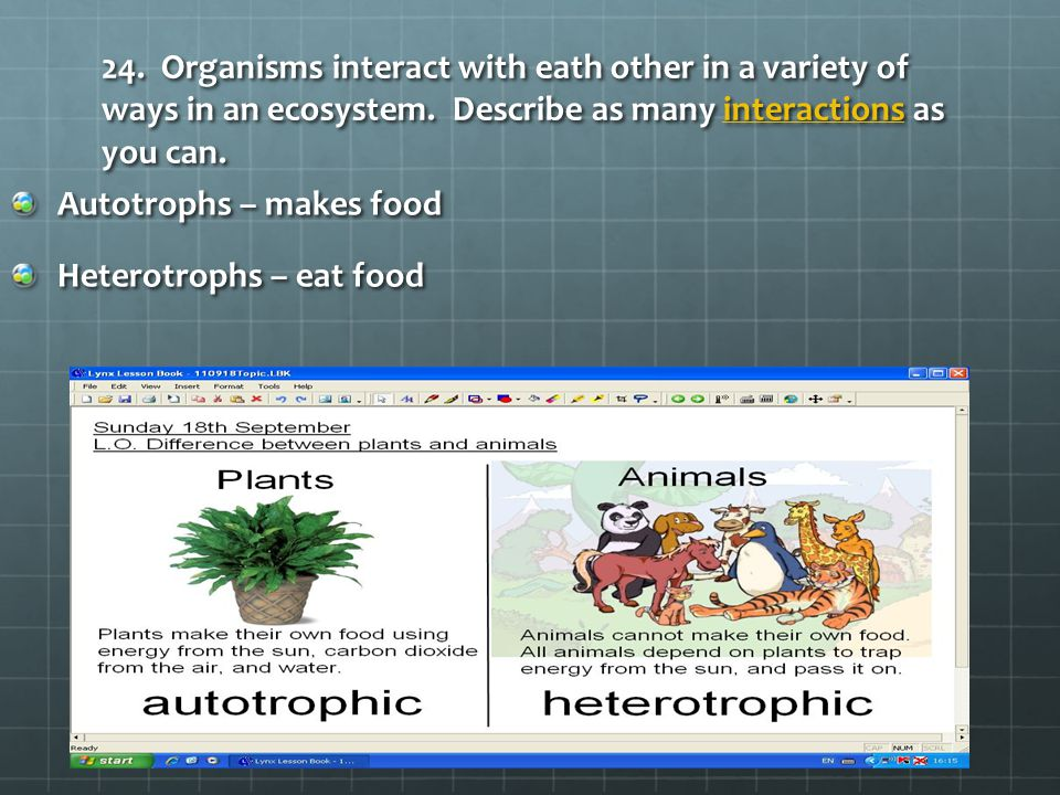 24. Organisms interact with eath other in a variety of ways in an ecosystem. Describe as many interactions as you can. interactions Autotrophs – makes