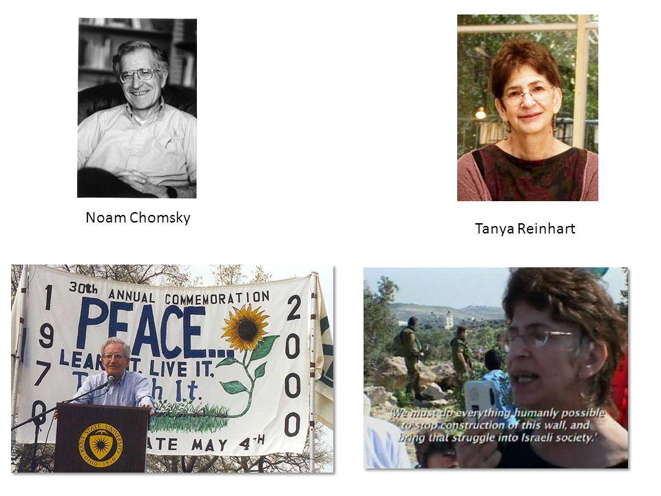 Noam Chomsky Tanya Reinhart
