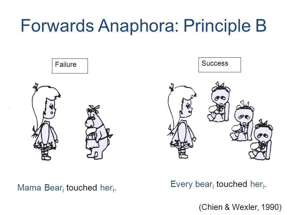 Mama Bear i touched her i. Forwards Anaphora: Principle B Every bear i touched her i.