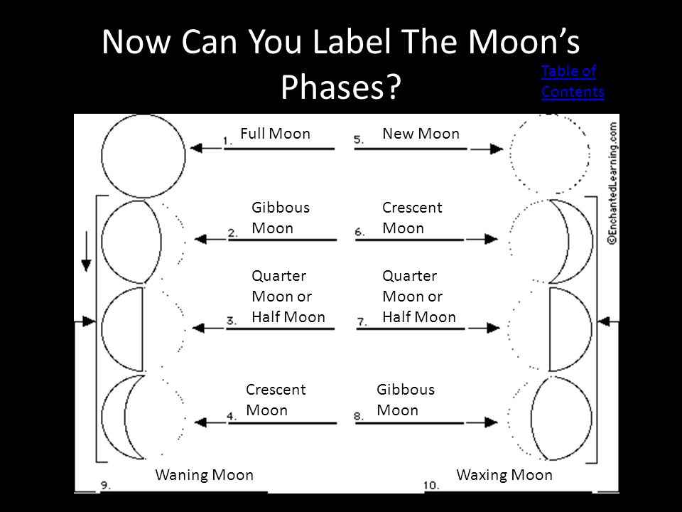 Now Can You Label The Moon's Phases? Full Moon Gibbous Moon Quarter Moon or Half Moon Crescent Moon New Moon Crescent Moon Quarter Moon or Half Moon G