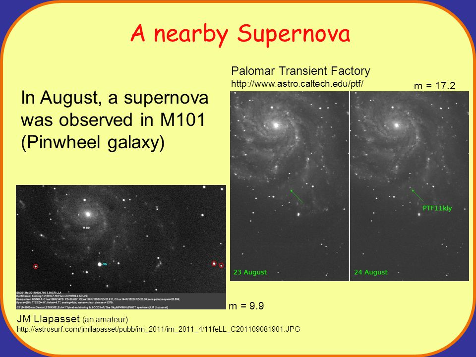 A nearby Supernova In August, a supernova was observed in M101 (Pinwheel galaxy) Palomar Transient Factory http://www.astro.caltech.edu/ptf/ m = 17.2 JM Llapasset (an amateur) http://astrosurf.com/jmllapasset/pubb/im_2011/im_2011_4/11feLL_C201109081901.JPG m = 9.9