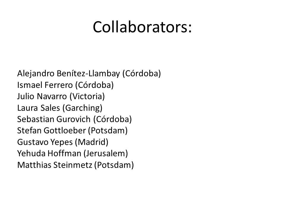 Collaborators: Alejandro Benítez-Llambay (Córdoba) Ismael Ferrero (Córdoba) Julio Navarro (Victoria) Laura Sales (Garching) Sebastian Gurovich (Córdob