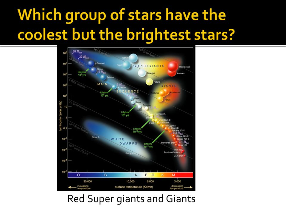Red Super giants and Giants