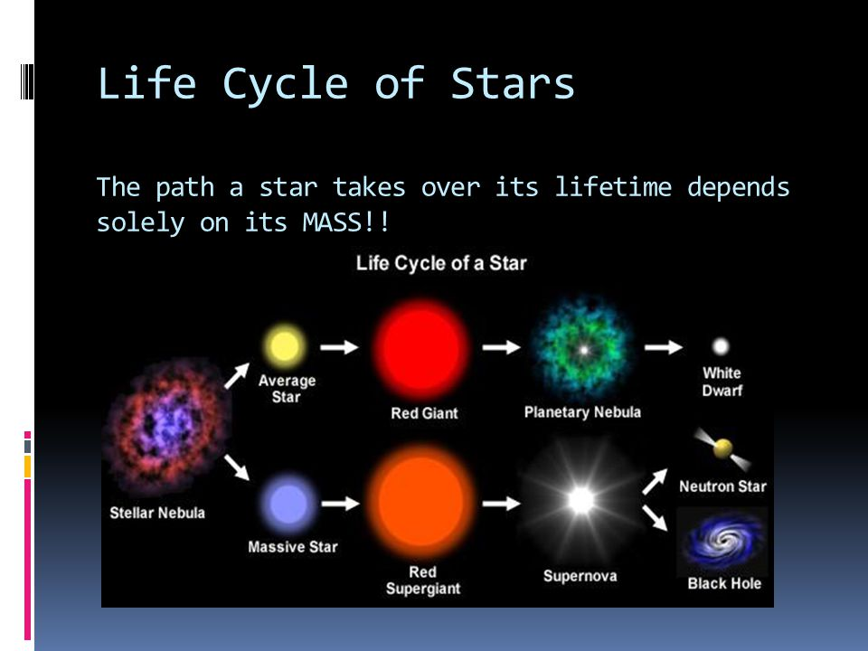 """Presentation """"Life Cycle of Stars. Life Cycle of Stars The path a ..."""