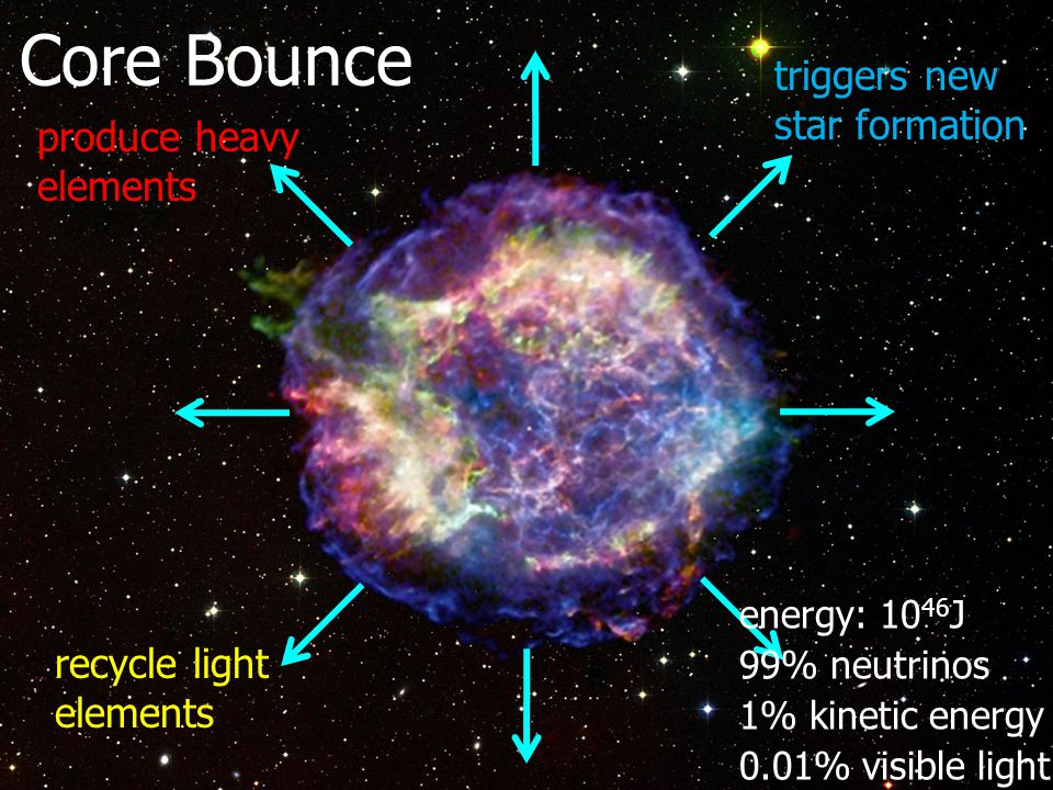 energy: 10 46 J 99% neutrinos 1% kinetic energy 0.01% visible light produce heavy elements recycle light elements triggers new star formation