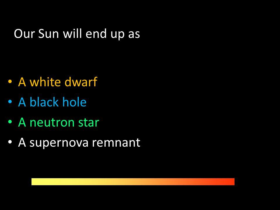Our Sun will end up as A white dwarf A black hole A neutron star A supernova remnant