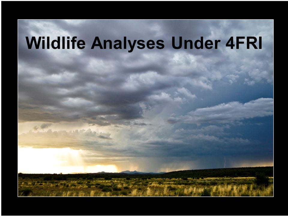 Wildlife Analyses Under 4FRI