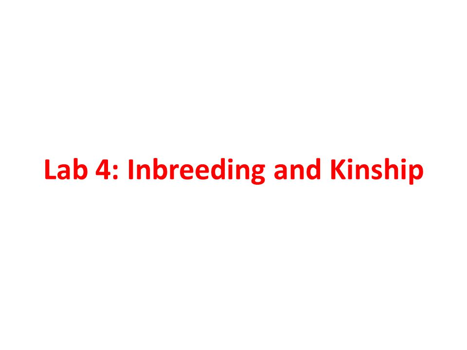 Example 1: Estimate the inbreeding coefficient of progeny resulting from mating between half-first cousins.