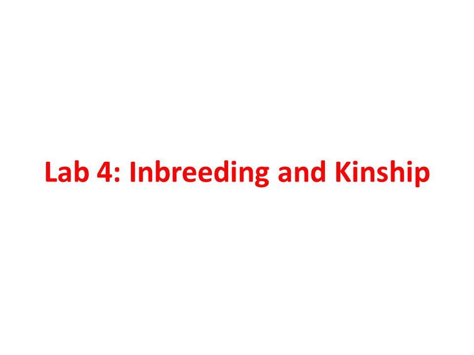 Lab 4: Inbreeding and Kinship