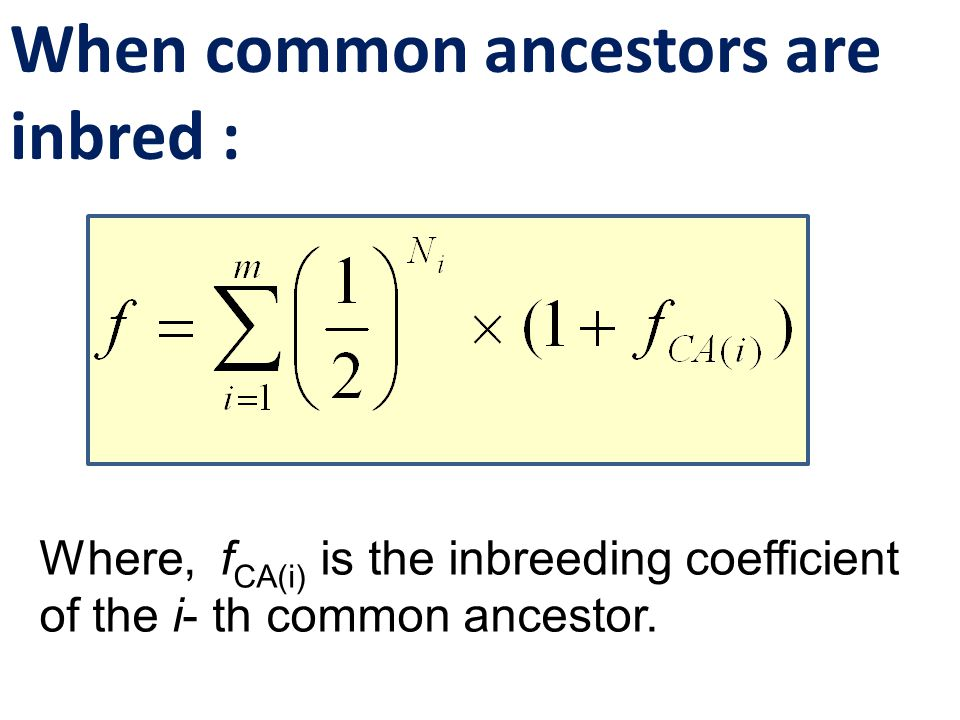 When common ancestors are inbred : Where, f CA(i) is the inbreeding coefficient of the i- th common ancestor.