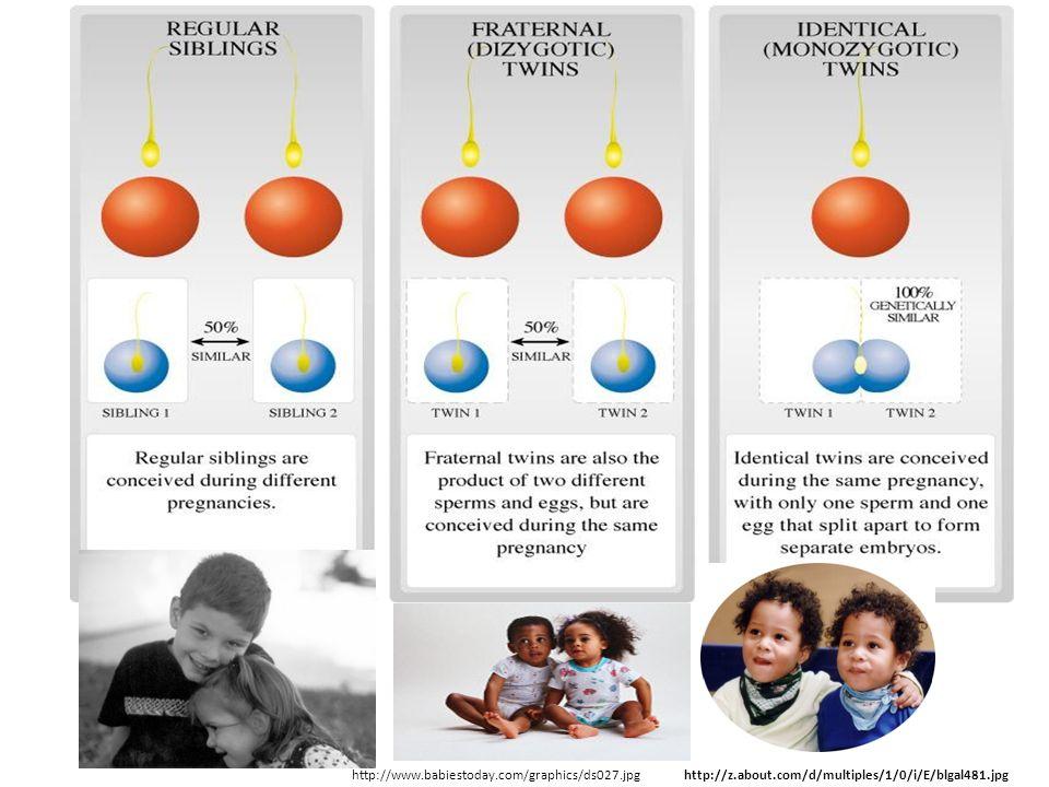 http://z.about.com/d/multiples/1/0/i/E/blgal481.jpg http://www.babiestoday.com/graphics/ds027.jpg