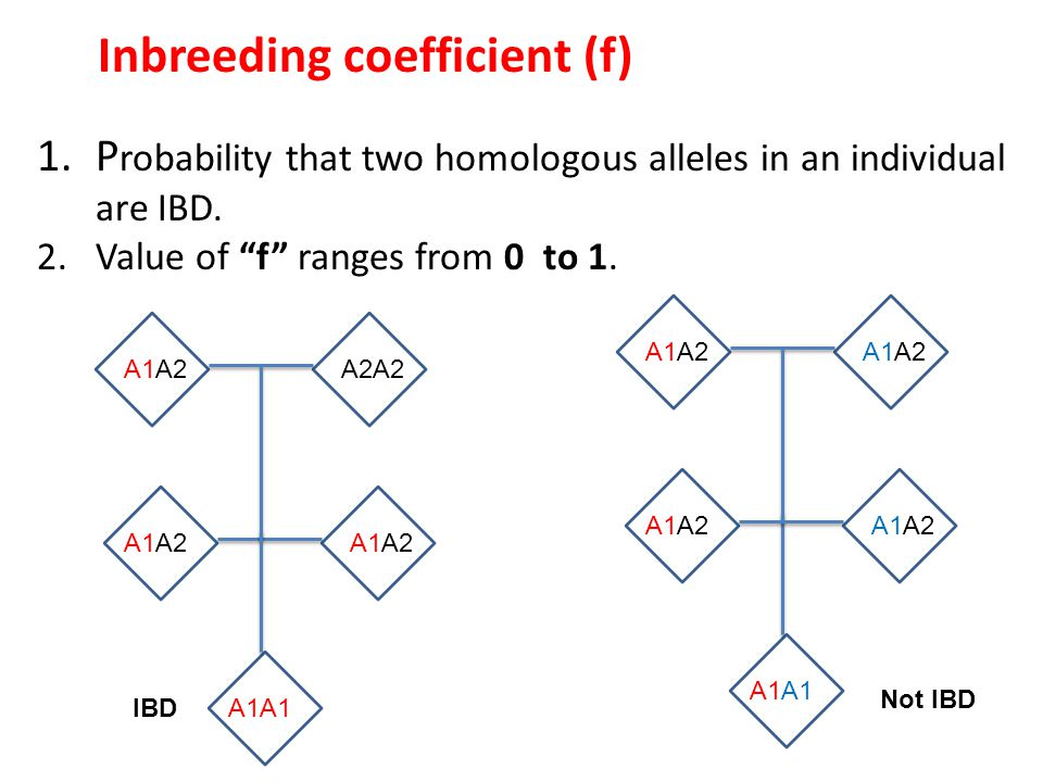 The inbreeding coefficient (f) can be calculated using the fixation index (F), assuming the departure from HWE is entirely due to inbreeding.