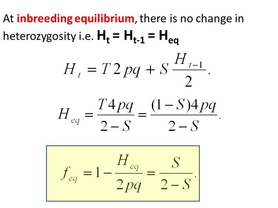 At inbreeding equilibrium, there is no change in heterozygosity i.e. H t = H t-1 = H eq