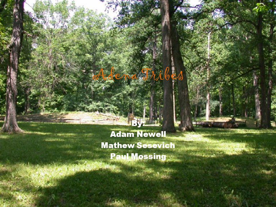 By: Adam Newell Mathew Sesevich Paul Mossing Adena Tribes