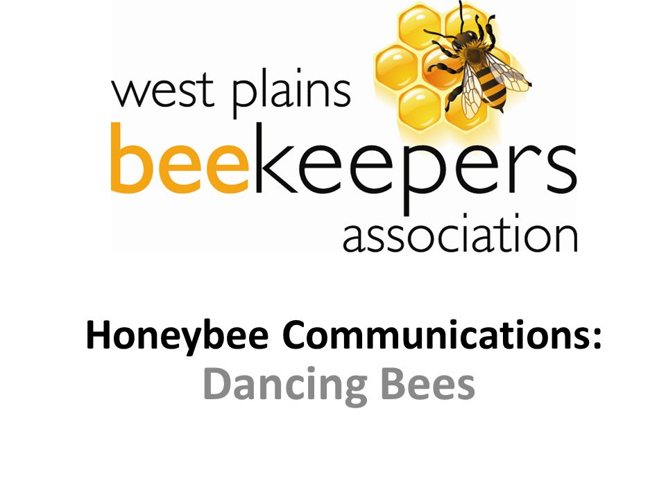 Honeybee Communications: Dancing Bees