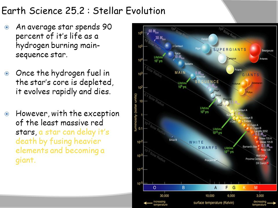Earth Science 25.2 : Stellar Evolution  An average star spends 90 percent of it's life as a hydrogen burning main- sequence star.  Once the hydrogen
