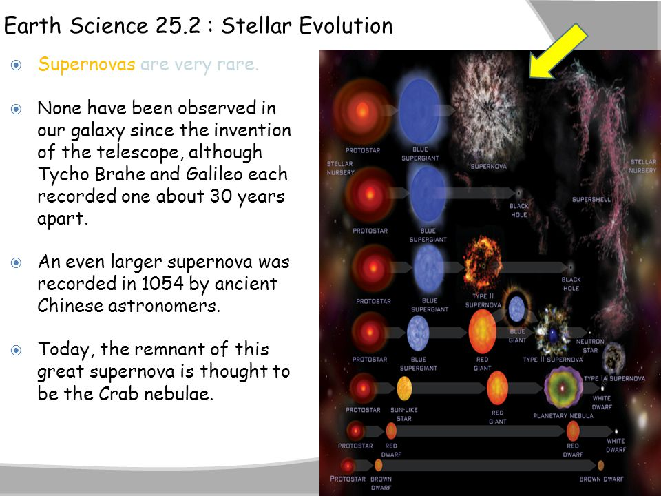 Earth Science 25.2 : Stellar Evolution  Supernovas are very rare.  None have been observed in our galaxy since the invention of the telescope, altho
