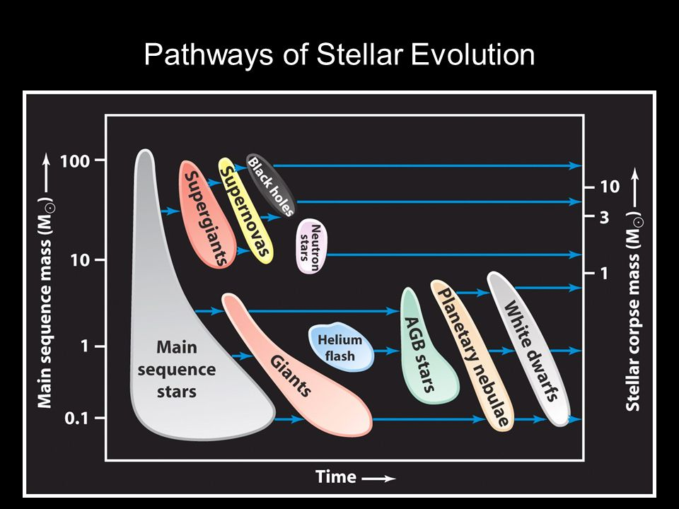 Pathways of Stellar Evolution