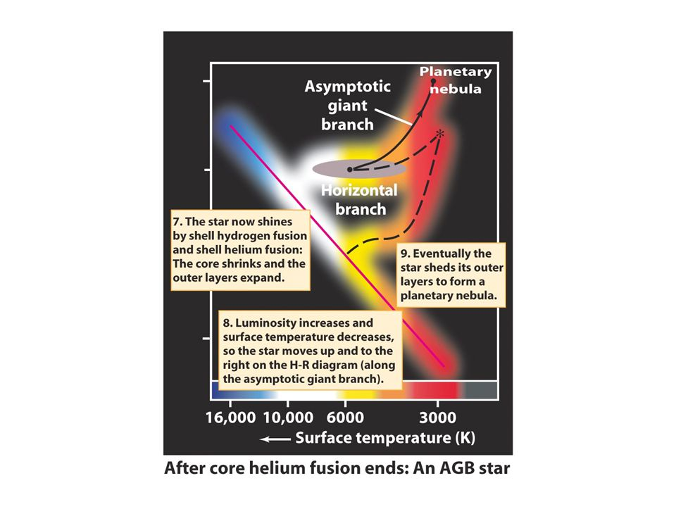 Dredge-ups bring the products of nuclear fusion to a giant star's surface As a low-mass star ages, convection occurs over a larger portion of its volume This takes heavy elements formed in the star's interior and distributes them throughout the star