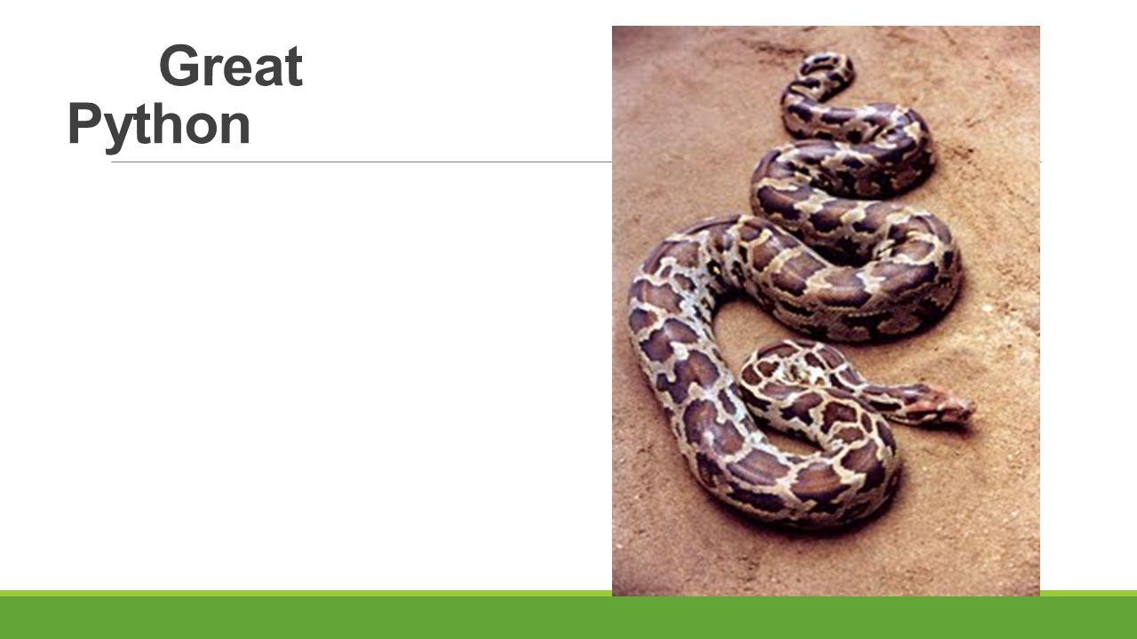 Great Python