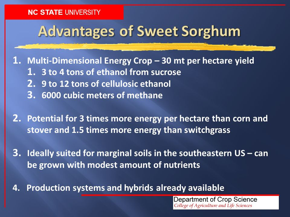 NC STATE UNIVERSITY 1. Multi-Dimensional Energy Crop – 30 mt per hectare yield 1.