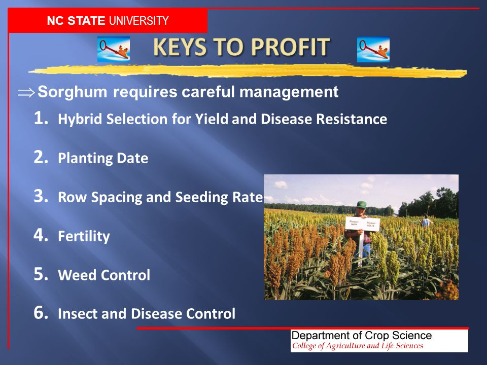 1. Hybrid Selection for Yield and Disease Resistance 2.