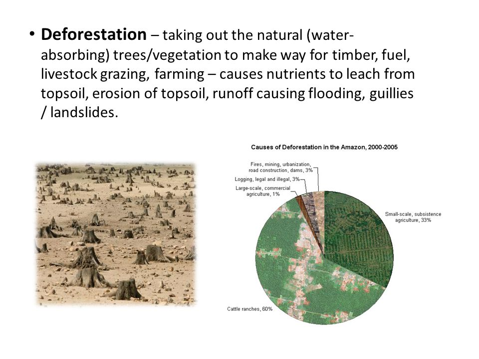 Deforestation – taking out the natural (water- absorbing) trees/vegetation to make way for timber, fuel, livestock grazing, farming – causes nutrients to leach from topsoil, erosion of topsoil, runoff causing flooding, guillies / landslides.