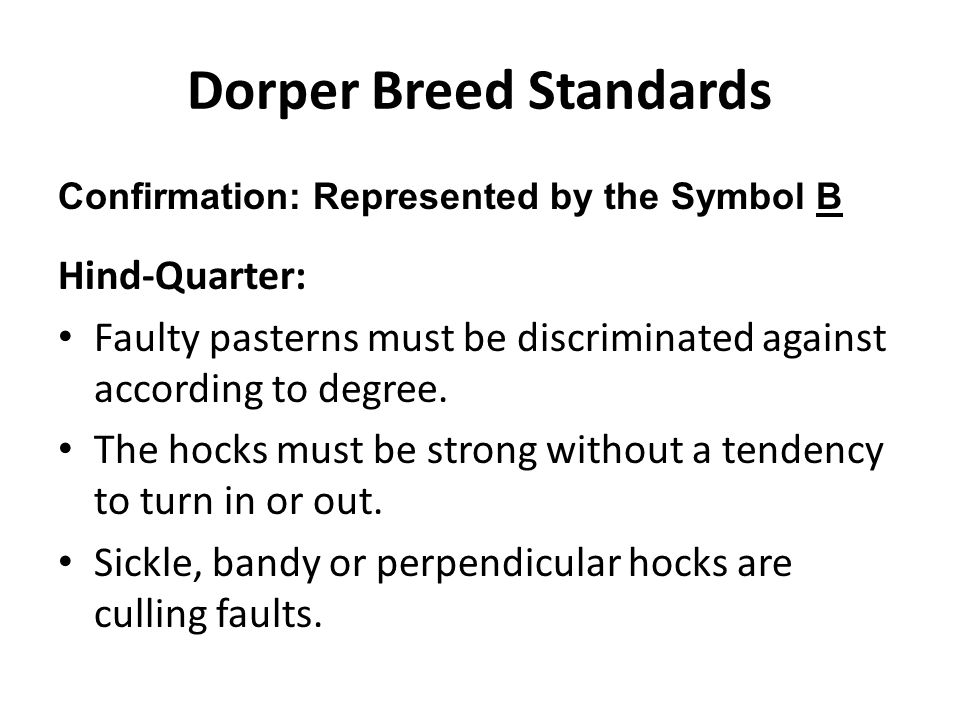 Dorper Breed Standards Confirmation: Represented by the Symbol B Hind-Quarter: Faulty pasterns must be discriminated against according to degree. The