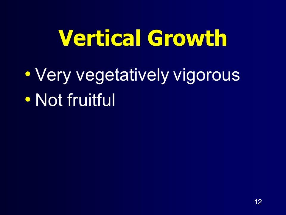 12 Vertical Growth Very vegetatively vigorous Not fruitful