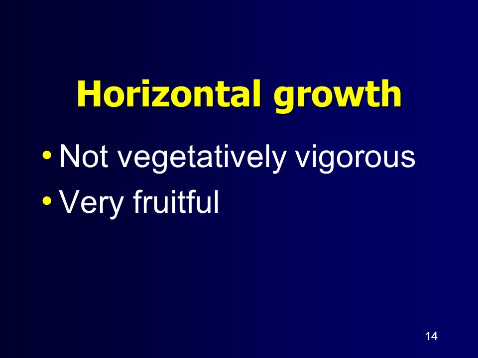 14 Horizontal growth Not vegetatively vigorous Very fruitful