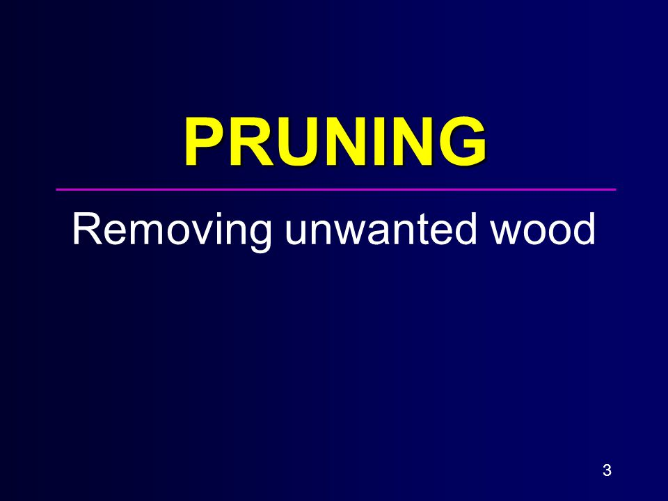 3 PRUNING Removing unwanted wood