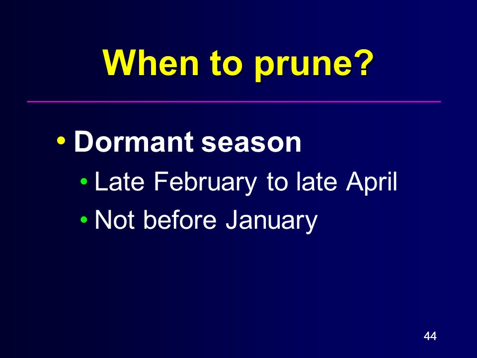 44 When to prune Dormant season Late February to late April Not before January