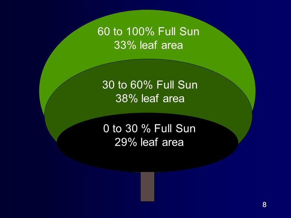 8 60 to 100% Full Sun 33% leaf area 30 to 60% Full Sun 38% leaf area 0 to 30 % Full Sun 29% leaf area