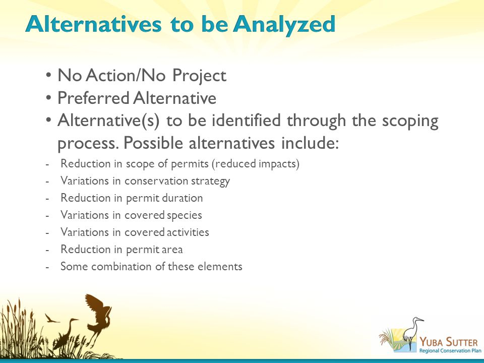 No Action/No Project Preferred Alternative Alternative(s) to be identified through the scoping process.
